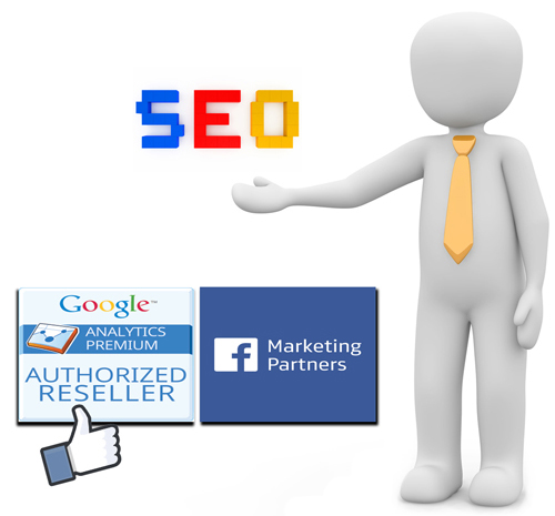 E-marketing SEO Temasis